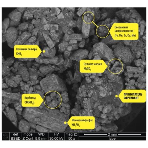 Нутривант Плюс 19-19-19, увеличение x50 (Уникальная формула прилипателя ФЕРТИВАНТ связываем между собой и закрепляет все макро- и микроэлементы)