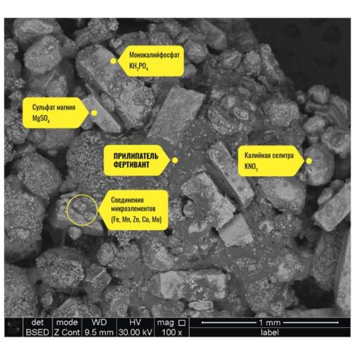 Нутривант Плюс 19-19-19, увеличение x100 (Уникальная формула прилипателя ФЕРТИВАНТ связываем между собой и закрепляет все макро- и микроэлементы)