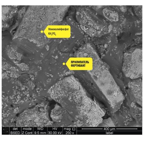 Нутривант Плюс 19-19-19, увеличение x250 (Уникальная формула прилипателя ФЕРТИВАНТ связываем между собой и закрепляет все макро- и микроэлементы)